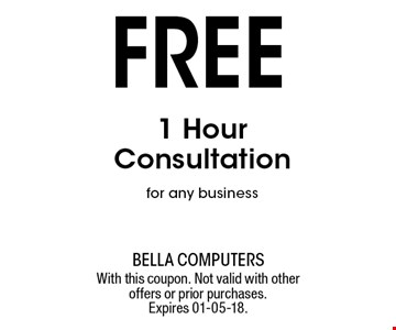 Free 1 Hour Consultation for any business. With this coupon. Not valid with other offers or prior purchases. Expires 01-05-18.