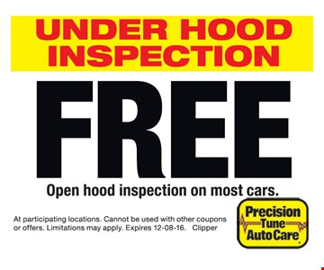 free under hood inspection