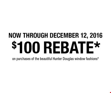 Now through December 12, 2016. $100 rebate* on purchases of the beautiful Hunter Douglas window fashions*.