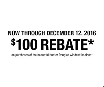 Now Through JANUARY 27, 2017.  $100 REBATE* on purchases of the beautiful Hunter Douglas window fashions*.