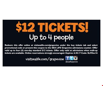 $12 Tickets Up to 4 People