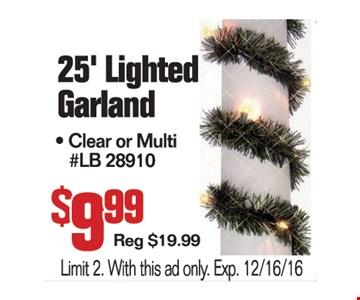 25' Lighted Garland $9.99