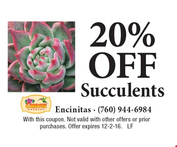 20%off Succulents. With this coupon. Not valid with other offers or prior purchases. Offer expires 12-2-16. LF