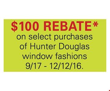 $100 rebate
