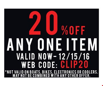 20% off any one item