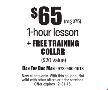 $65+ FREE training collar, 1-hour lesson ($20 value)(reg $75) . New clients only. With this coupon. Not valid with other offers or prior services. Offer expires 12-31-16.