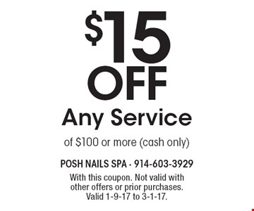$15 off Any Service of $100 or more (cash only). With this coupon. Not valid with other offers or prior purchases.Valid 1-9-17 to 3-1-17.