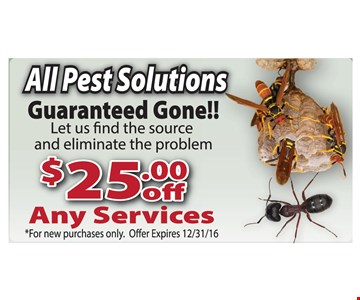 $25 off any services.