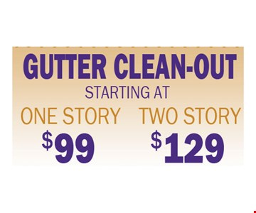 Gutter Clean-out Starting at $99