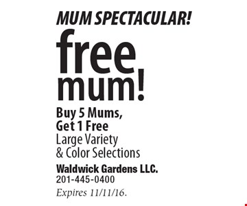 Free mum! Buy 5 Mums, Get 1 Free. Large Variety & Color Selections. Expires 11/11/16.