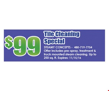 $99 The Cleaning Special
