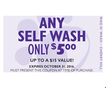 Any Self Wash Only $5