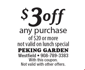 $3 off any purchase of $20 or more. Not valid on lunch special. With this coupon. Not valid with other offers.