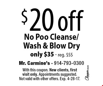 $20 off No Poo Cleanse/ Wash & Blow Dry. Only $35 - reg. $55. With this coupon. New clients, first visit only. Appointments suggested. Not valid with other offers. Exp. 4-28-17.