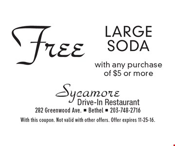 Free large soda with any purchase of $5 or more. With this coupon. Not valid with other offers. Offer expires 11-25-16.
