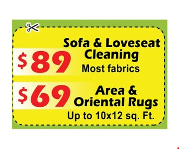 $89 Sofa & Loveseat Cleaning