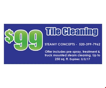 $99 Tile cleaning