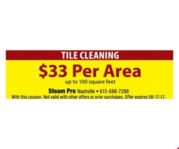 Tile Cleaning $33 per area