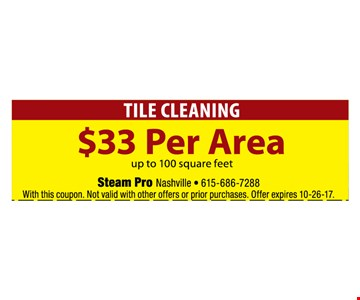 Tile cleaning for $33 per Area