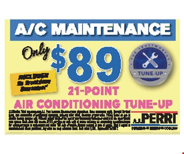 21-point air conditioning tune-up $89