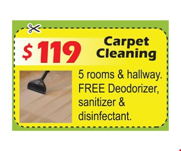$119 Carpet Cleaning 5 rooms & hallway, Free deodorizer, sanitizer & disinfectant