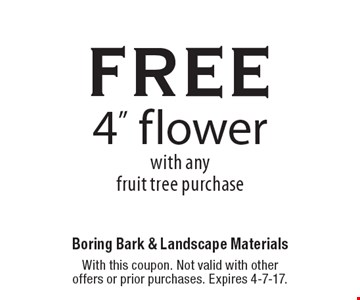 free 4