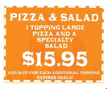 $15.95 Pizza & Salad