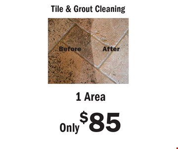 Tile & Grout Cleaning. Only $85 for 1 Area. An area is defined as a room up to 300 square feet. Combination areas and areas over 300 square feet are considered as separate areas. Baths, staircases, landings, halls, walk-in closets and area rugs are priced separately. Valid for residential areas only. Prices may vary for specialty fabrics, loose back cushions, wool and oriental carpet and special services. Air duct pricing valid on single furnace homes only. Extra charge may apply for homes with multiple heating/cooling systems or homes with furnace or vents that are not easily accessible. Not responsible for existing broken tiles and or loose grout. Energy savings may vary depending on the size of your home and the condition of your heating/cooling system. Offer/service not available in all areas. Minimum order may apply. Other restrictions may apply. Call for details. Not valid with any other coupon or offer. Void where prohibited. Services supplied by Sears associates or franchisees. Sears cards are issued by Citibank (South Dakota) N.A. A temporary fuel charge may be added. Offers expire 6-29-17.