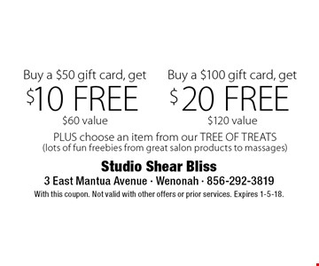 $20 FREE Buy a $100 gift card, get $120 value. $10 FREE Buy a $50 gift card, get $60 value. PLUS choose an item from our TREE OF TREATS(lots of fun freebies from great salon products to massages). With this coupon. Not valid with other offers or prior services. Expires 1-5-18.