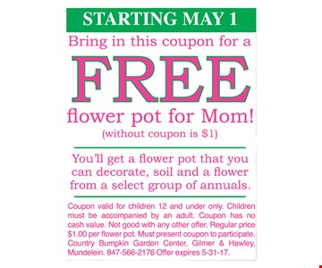 Free Flower Pot for Mom!