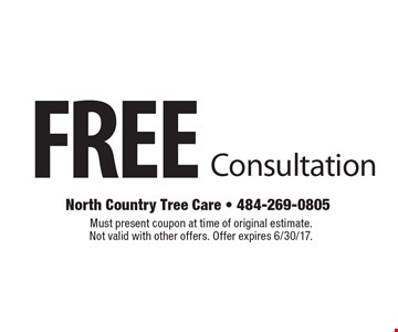 FREE Consultation. Must present coupon at time of original estimate. Not valid with other offers. Offer expires 6/30/17.