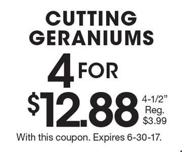 4 FOR $12.88 CUTTING GERANIUMS 4-1/2