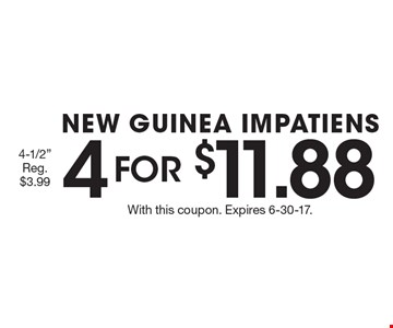 4 FOR $11.88 NEW GUINEA IMPATIENS 4-1/2