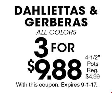 3 FOR $9.88 DAHLIETTAS & GERBERAS ALL COLORS 4-1/2