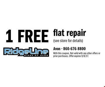 1 FREE flat repair (see store for details). With this coupon. Not valid with any other offers or prior purchases. Offer expires 9/8/17.