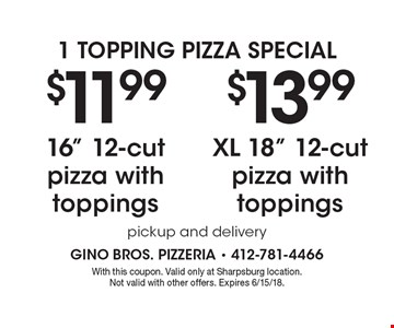 1 Topping Pizza Special $11.99 16