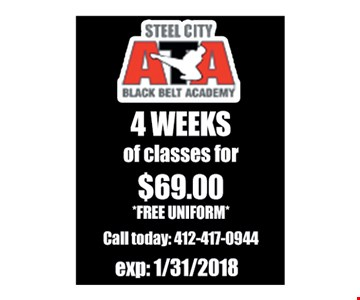 Steel City ATA 4 weeks of classes for $69.00