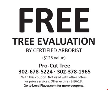 FREE TREE EVALUATION BY CERTIFIED ARBORIST ($125 value). With this coupon. Not valid with other offers or prior services. Offer expires 3-16-18. Go to LocalFlavor.com for more coupons.