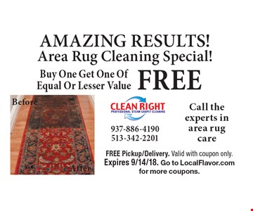 AMAZING RESULTS! Free Area Area Rug Cleaning Special! Buy One Get One Of Equal Or Lesser Value. FREE Pickup/Delivery. Valid with coupon only. Expires 9/14/18. Go to LocalFlavor.com for more coupons.