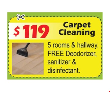$119 Carpet Cleaning