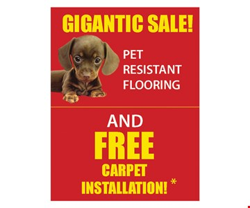 Pet resistant flooring and free installation