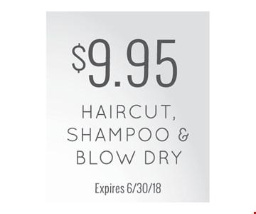 $9.95 haircut, shampoo and blow dry