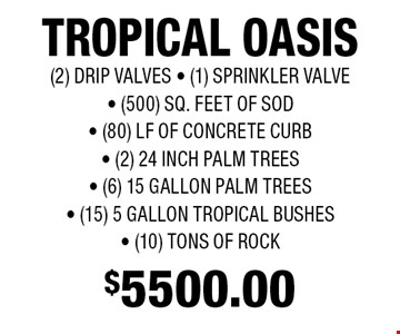 $5500.00 TROPICAL OASIS (2) DRIP VALVES - (1) SPRINKLER VALVE - (500) SQ. FEET OF SOD - (80) LF OF CONCRETE CURB- (2) 24 INCH PALM TREES - (6) 15 GALLON PALM TREES - (15) 5 GALLON TROPICAL BUSHES - (10) TONS OF ROCK.