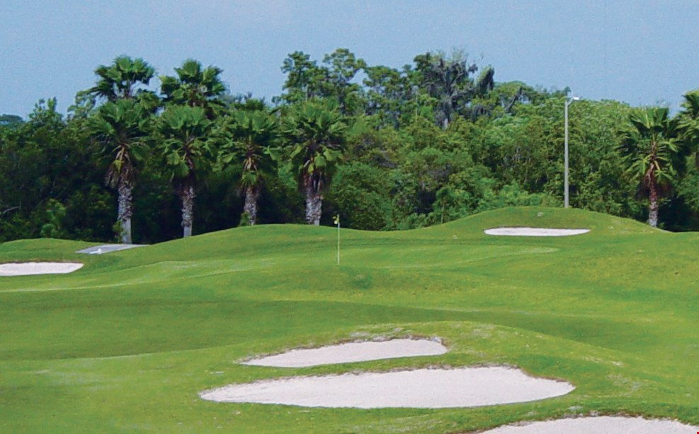 Product image for Summerfield Crossings Golf Club $37 For 18 Holes Of Golf For 2 Including Cart (Valid Noon-Closing) (Reg. $74)