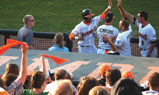Product image for Schaumburg Boomers $24 For 4 Box Seat Tickets (Reg. $48)