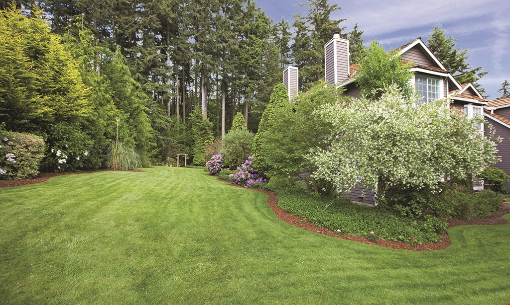 Product image for Evergreen $350 For A Full Acre Lawn Aeration & Winterization (Reg. $700)