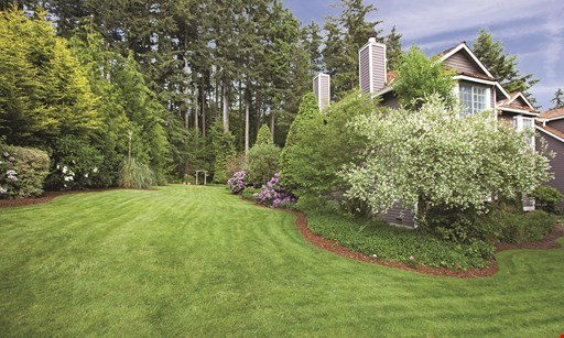 Product image for Evergreen $200 For A Half Acre Lawn Aeration & Winterization (Reg. $400)