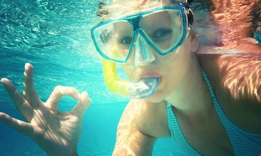 Product image for St. Augustine Aquarium $19.50 for a Snorkeling Adventure at St. Augustine Aquarium (Reg. $39)