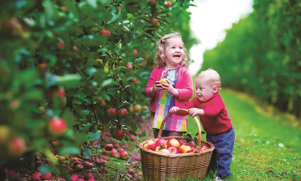 Product image for Riverview Orchards $12.50 For $25 Worth Of Pick Your Own Apples For The 2020 Season