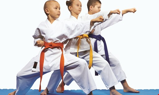 Product image for World Champion Taekwondo - Southbury $40 For A 3-Week Program (Reg. $80)